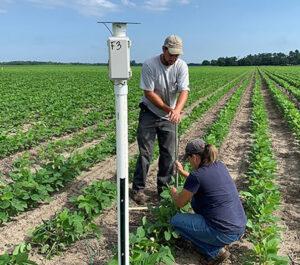 installing a soil moisture sensor